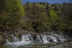 新緑の季節に(せせらぎ街道の平滝)