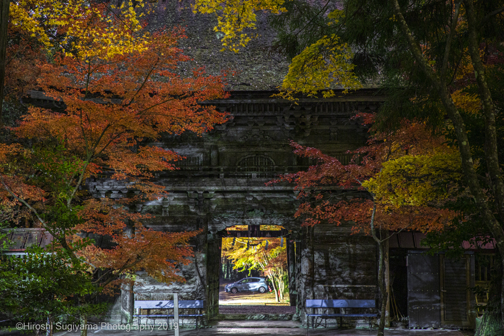 大矢田神社楼門(2019紅葉)