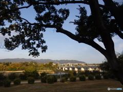 武庫川の朝