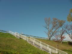 青空と階段
