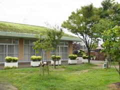 草屋根ハウス