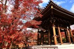 紅葉の鐘楼