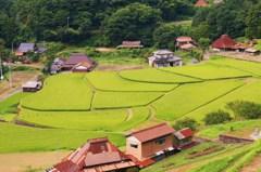 棚田の残る村