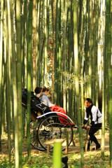 竹林遊び♬
