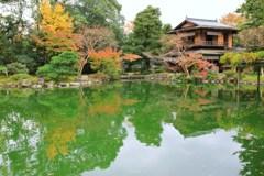 秋の九条池