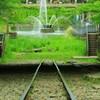 廃線と新緑と噴水