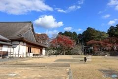 篠山城跡にて