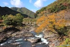 丹波 川代公園にて