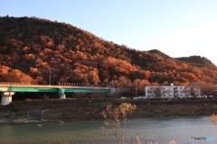 故郷秋色 向山を望む