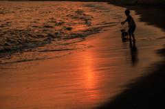 夕方の浜辺