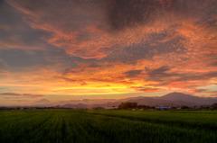 田園地帯の夕焼け