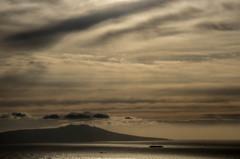 朝の大島航路