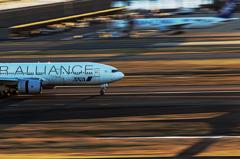 @Haneda Airport Ⅱ