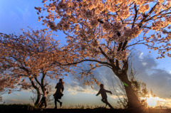 桜堤の家族 Ⅰ