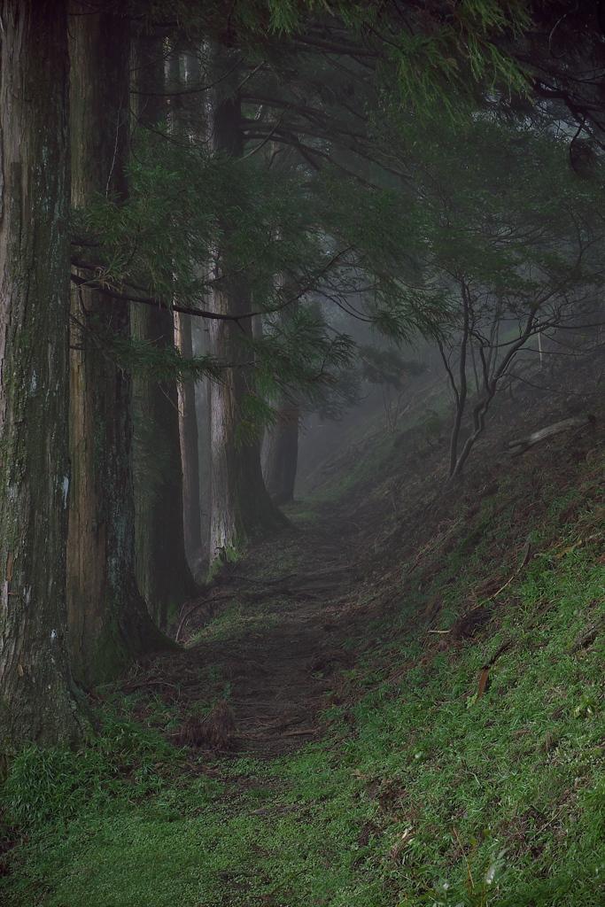 玉置山の奥駈道