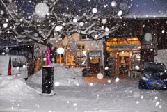 雪の降る日 1