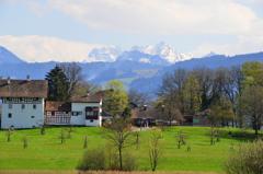 スイスにも春が来た。