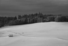 田舎の雪景色2