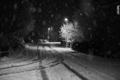 雪が降る2