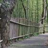 まるで京都のよう