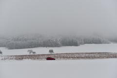 雪の景色 車