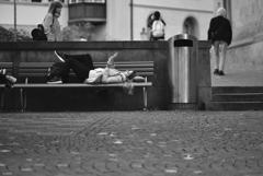 Street Snao196