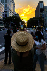 Straw hat and evening glow