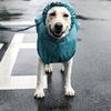 雨の日散歩はレインコート着て…