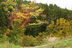 地蔵池の紅葉