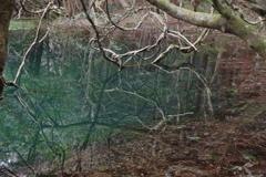 雪のない真冬の丸池様-3