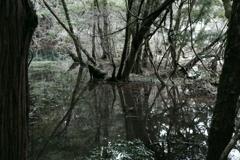 神の池‐丸池様8