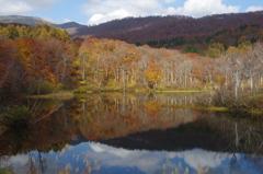 晩秋の月山・地蔵池-1