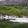 五月の風₋新緑と残雪の月山・地蔵池