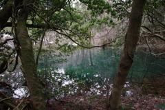 雪のない真冬の丸池様-2