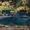 秋彩の丸池様-1