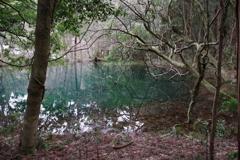 雪のない真冬の丸池様-1
