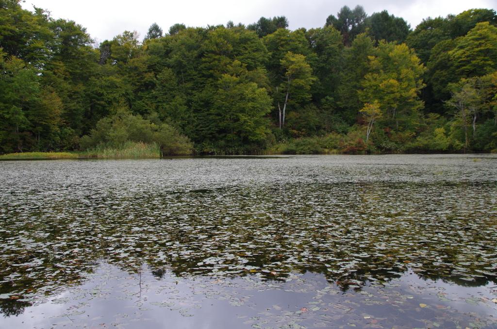 少し秋彩-月山・地蔵池3