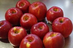 紅玉林檎でジャムづくり-1