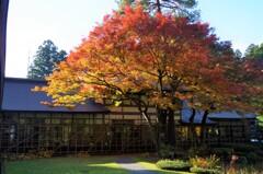 羽黒山-出羽の里門前庭園1