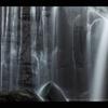 桑の木滝#2
