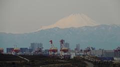 TOKYO SAFARI PARK