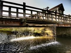 桶橋に水は流れて