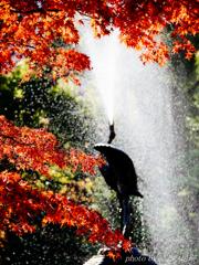 秋の雄叫び
