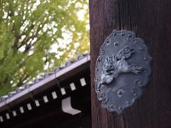 京都補完計画 其ノ佰肆拾弐