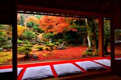 朝潤の秋庭園