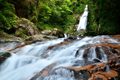 Fusion Waterfall