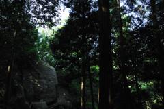 千数百年の時を超え 狛坂磨崖仏