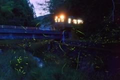 ホタル列車