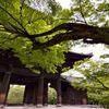 南禅寺・山門・新緑