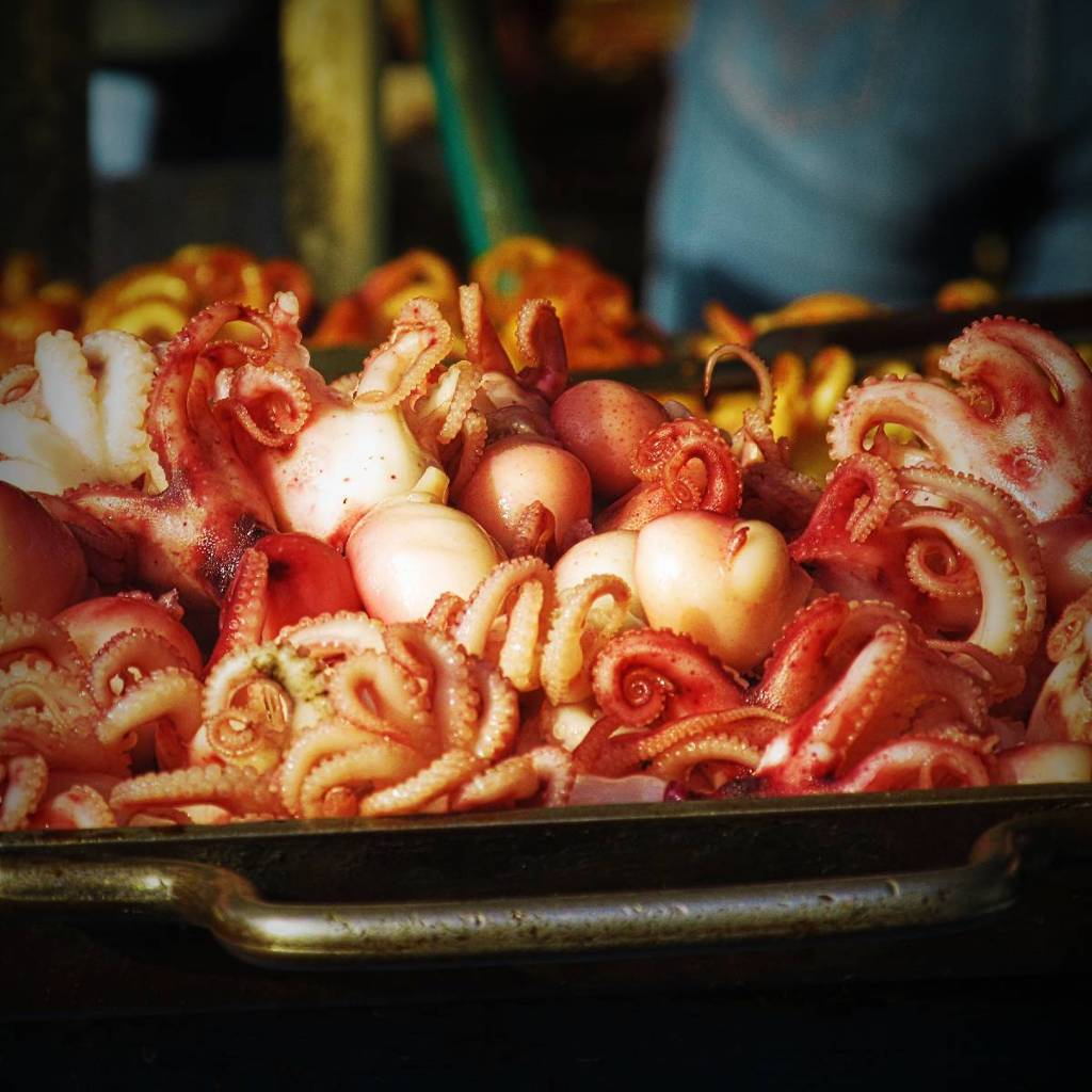 Octopus on grill-plate
